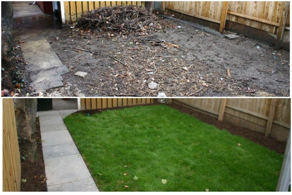 Sodded lawn before and after