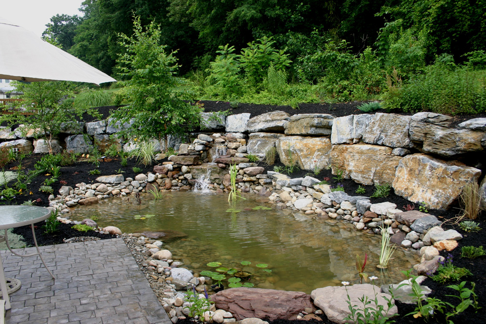 Indian run landscaping water garden installation for Water garden landscaping